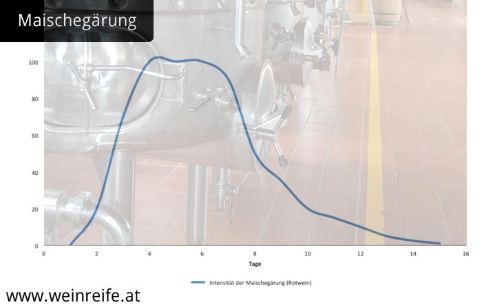 Graph über den Verlauf der Intensität der Maischegärung