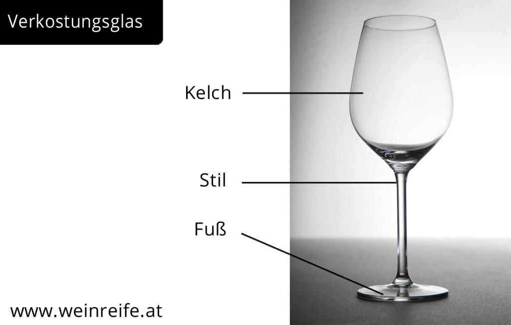 Glas für Weinverkostung, bestehend aus Kelch, Stil und Fuß